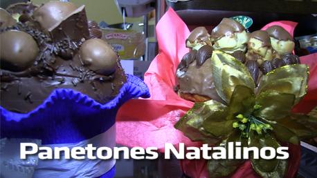 Conheça os novos Panetones Natalinos do Sabor das Massas. Aproveite!